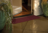 Plastic Threshold Ramp